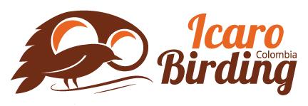 Icaro Birding Tours