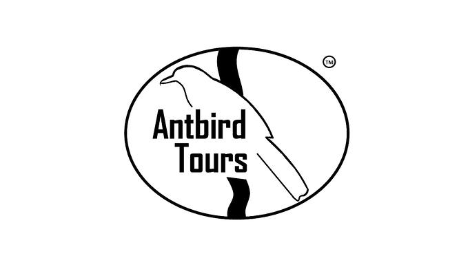 Antbird Tours