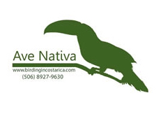 Ave Nativa Birding