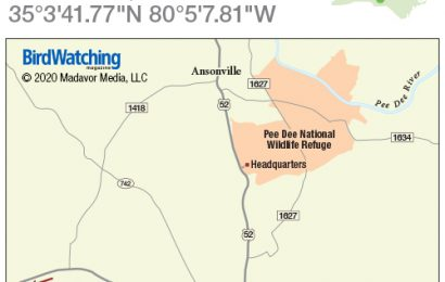 300. Pee Dee National Wildlife Refuge, Wadesboro, North Carolina