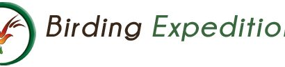 Birding Expeditions