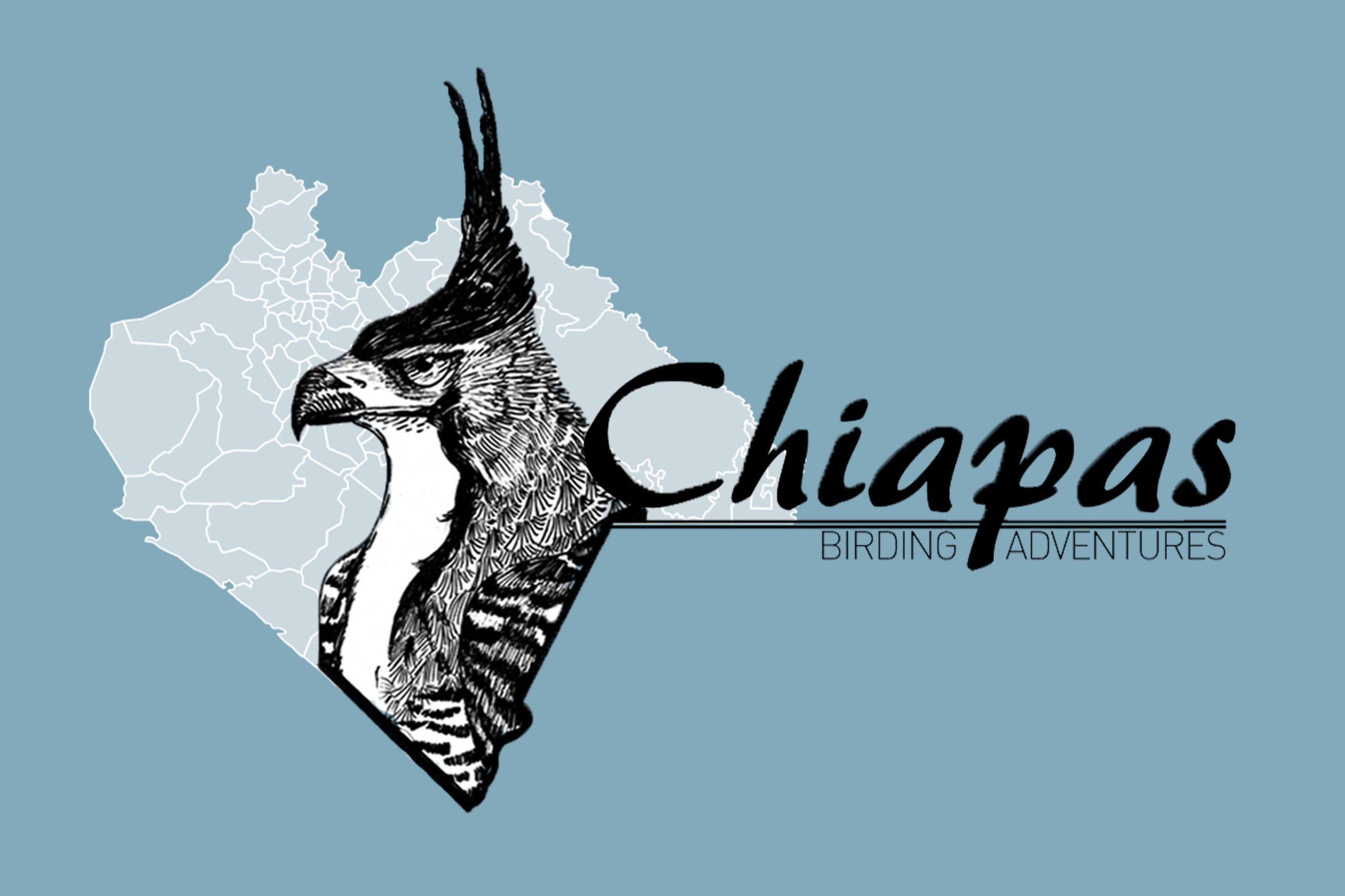 Chiapas Birding Adventures