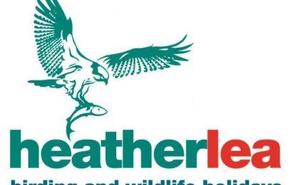 Heatherlea Holidays