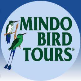 Mindo Bird Tours