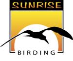 Sunrise Birding