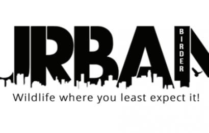 Urban Birder Tours