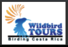 Wildbird Tours
