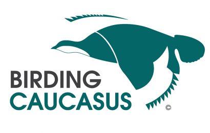 Birding Caucasus