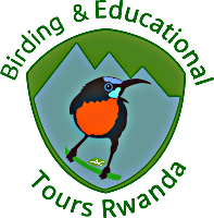 Birding and Educational Tours Rwanda