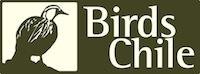 Birds Chile