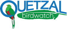 Quetzal Birdwatch