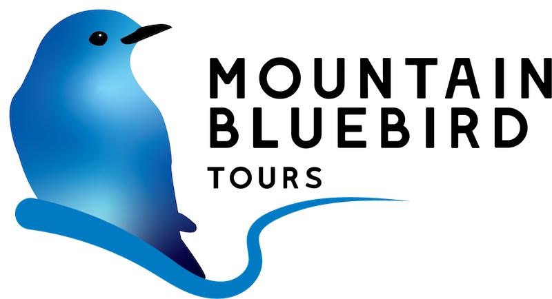 Mountain Bluebird Tours
