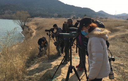 A letter from Beijing on birding and COVID-19