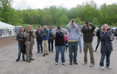 Should spring birding festivals be canceled due to coronavirus?