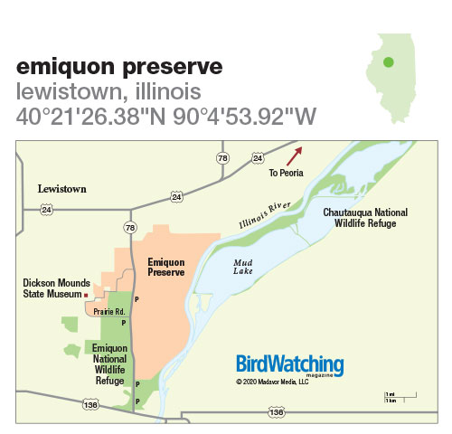 304. Emiquon Preserve, Lewistown, Illinois