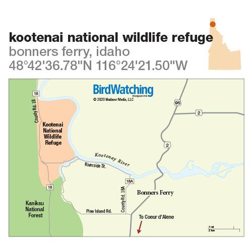 303. Kootenai National Wildlife Refuge, Bonners Ferry, Idaho