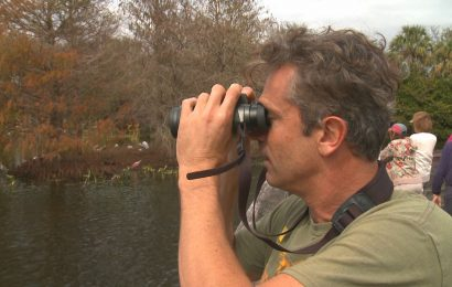 Lockdown birding: Staying connected with birds and birders