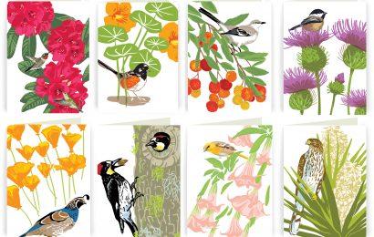 Golden Gate Audubon holds online bird art auction