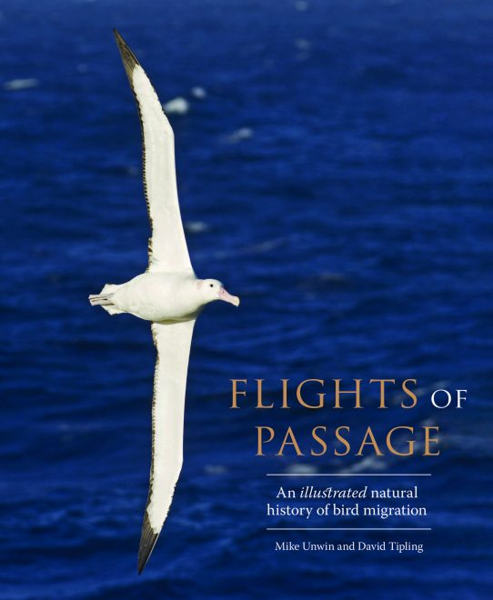 Flights of Passage