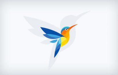 Color Of Birds