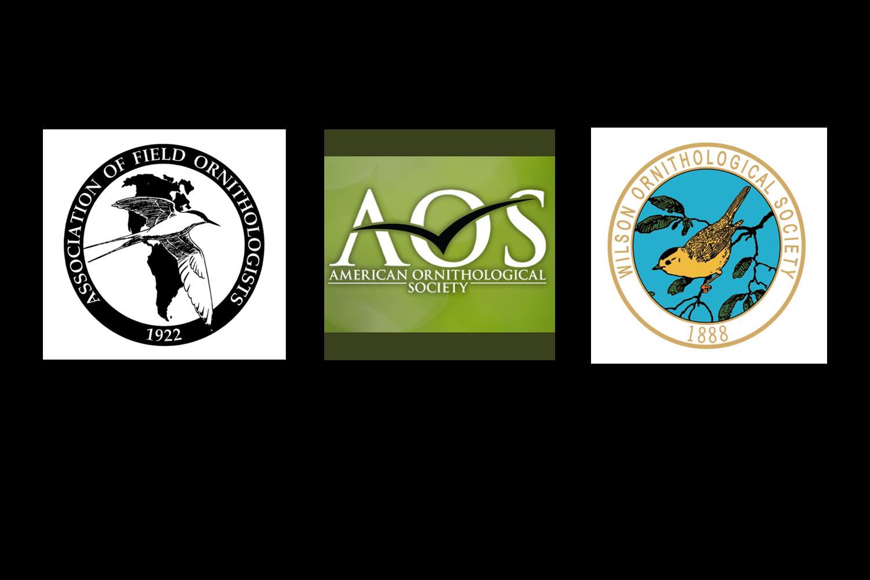 Ornithological groups
