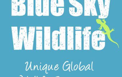 Blue Sky Wildlife