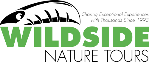 Bird Watching Contest Sponsor Logo