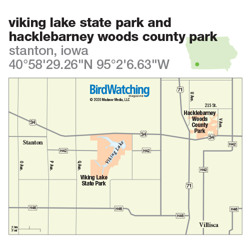 306. Viking Lake State Park and Hacklebarney Woods County Park, Stanton, Iowa