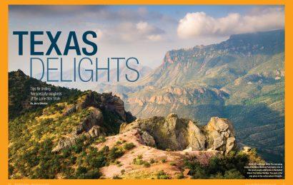 Texas delights