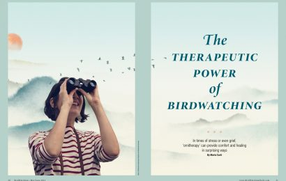 The therapeutic power of birdwatching