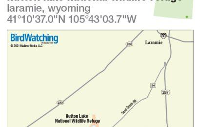 312. Hutton Lake National Wildlife Refuge, Laramie, Wyoming