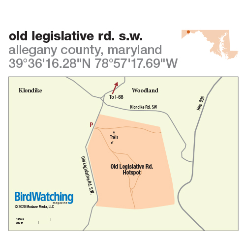 311. Old Legislative Rd. S.W., Allegany County, Maryland