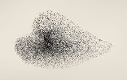 Søren Solkær photographs starlings for new book, Black Sun