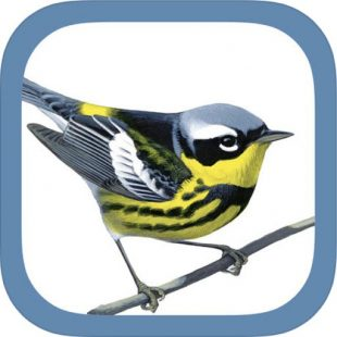 The Sibley eGuide to Birds App