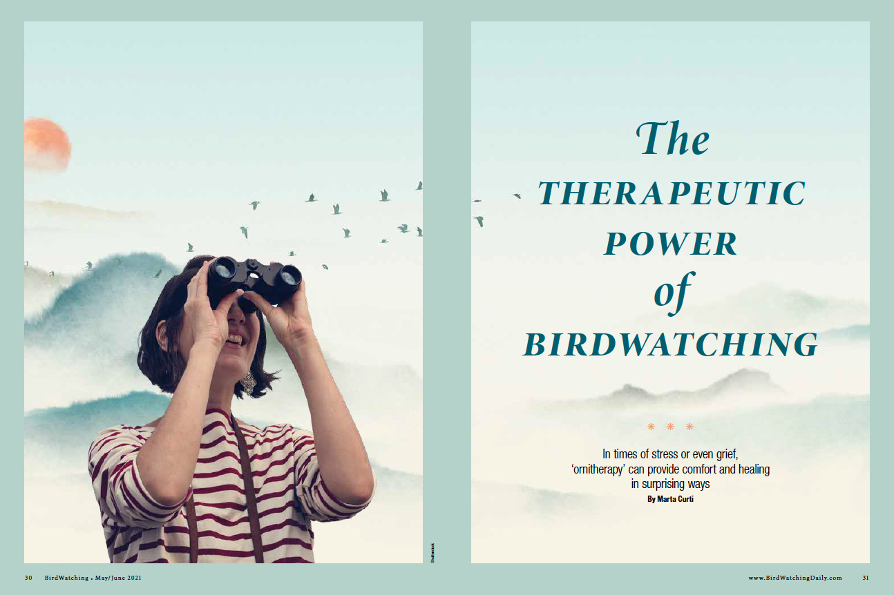 Ornitherapy