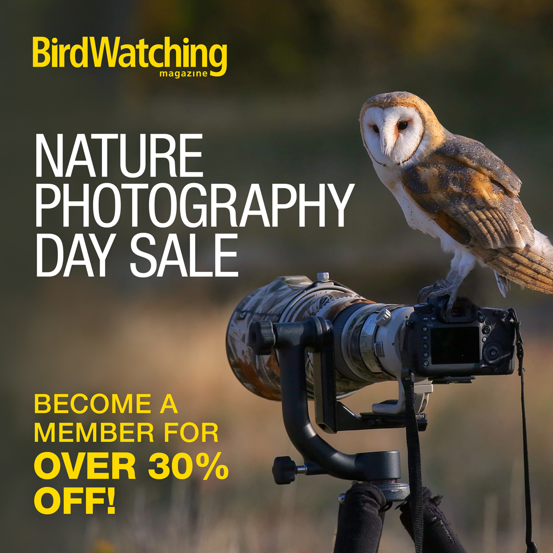 Nature Photography Day Sale