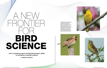 A New Frontier for Bird Science