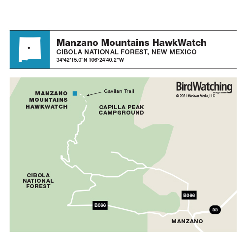 316. Manzano Mountains HawkWatch, Cibola National Forest, New Mexico