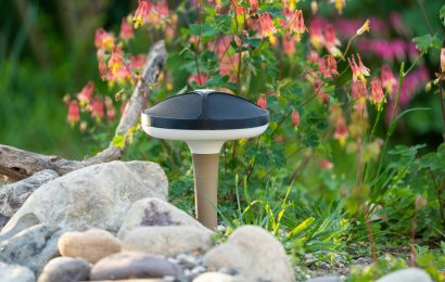 Terra devices offer the chance to listen to your backyard birds