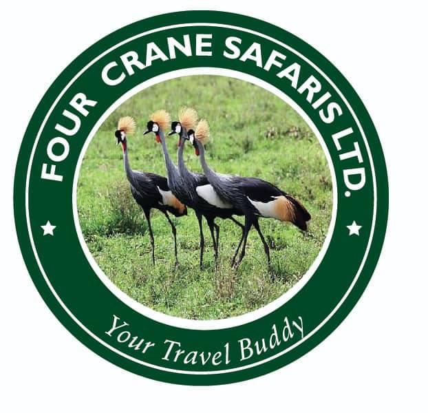 Four Crane Safaris